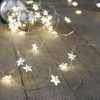 20L Led fairy light with star decoration